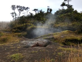 Volcani Steam Vent in Hawaii
