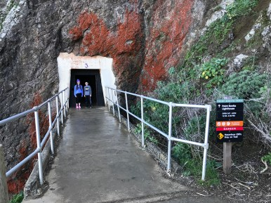 Point Bonita Trail Tunnel