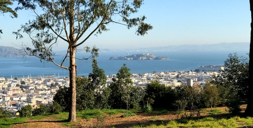 View of Alcatraz From the Presidio Broadway Gate