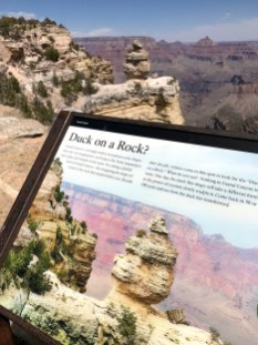 Duck On A Rock Interpretive Sign at Grand Canyon