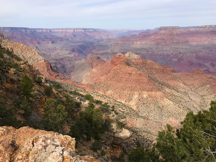 View of the Grand Canyon from the Desert View Overlook