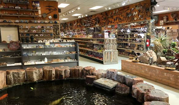 A Look Inside Jim Gray's Petrified Wood Company