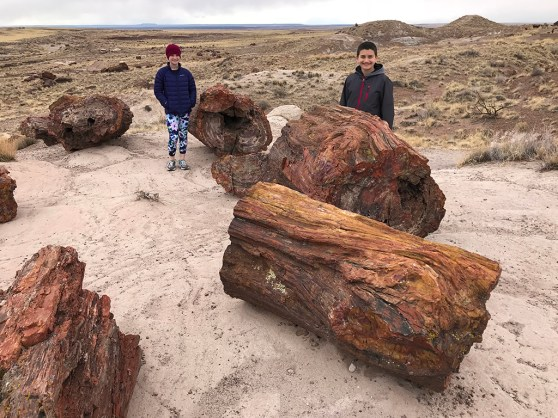 Natalie and Carter Bourn Walking the Petrified Forest Giant Logs Trail