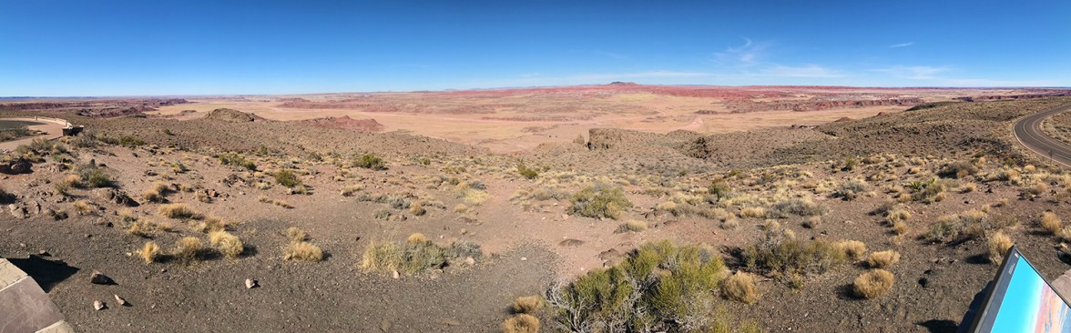 Petrified Forest Pintado Point Scenic Overlook