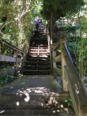 San Francisco's Filbert Steps on Telegraph Hill