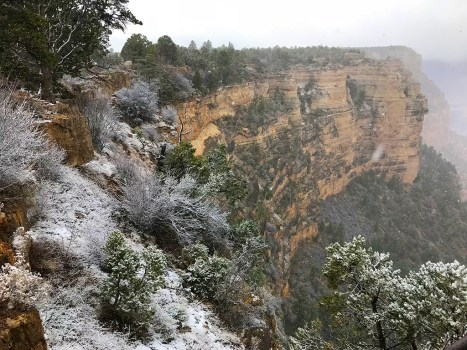 Snow on the Grand Canyon South Rim