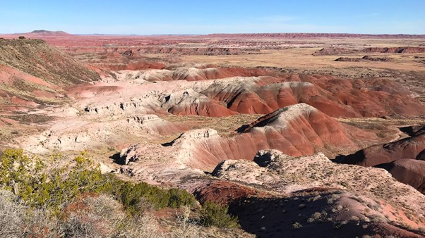 Tawa Point at Petrified Forest National Park