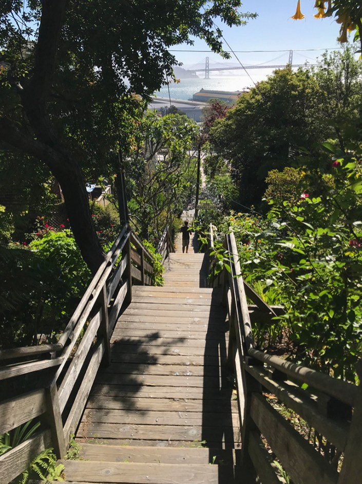 Filbert Steps On Telegraph Hill