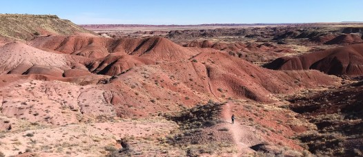Tiponi Point at Petrified Forest National Park