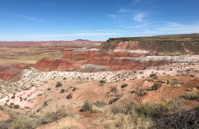 View of Painted Desert at Whipple Point