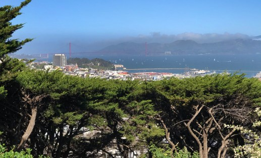 View from Coit Tower Parking Lot