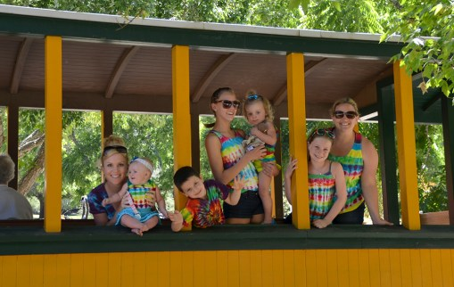 family-riding-the-roaring-camp-mountain-train-2013