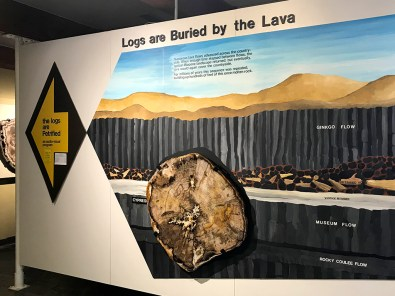 Ginko Petrified Forest Visitor Center Display