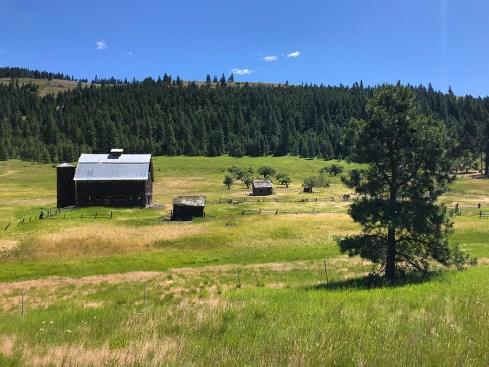 Old Barn In A Field Near Ellensburg, Washington