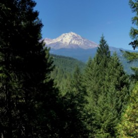 View of Mount Shasta From the Castle Crags State Park Vista Point