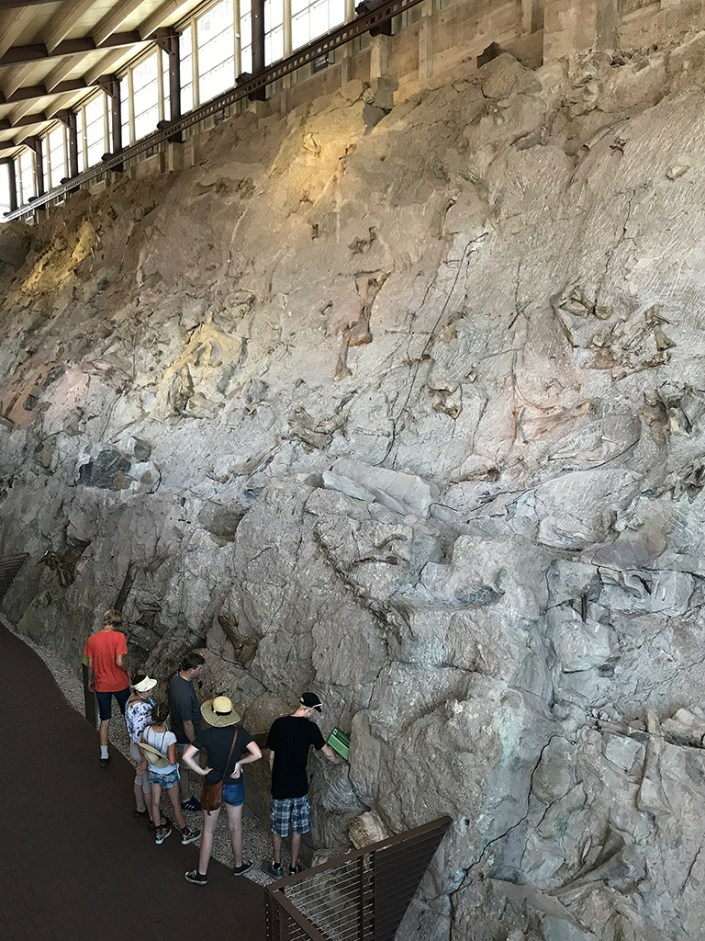 The Carnegie Quarry Wall Of Bones