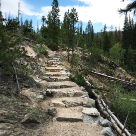 Adams Falls Trail Stone Staircase