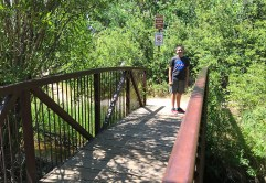 Knoll-Willows Open Space Trail Bridge
