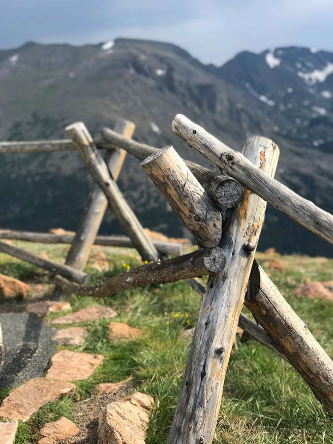 Wooden Fencing Alpine Tundra