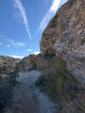 Climbing Javelina Rocks at Saguaro East in Arizona