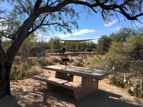 Mica View Picnic Area at Saguaro East
