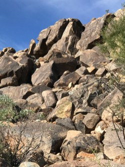 Petroglyphs in Tucson, Arizona