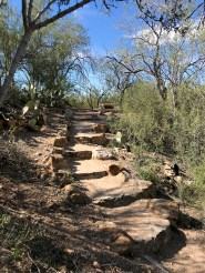 Signal Hill Picnic Area at Saguaro West