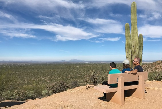 Avra Valley Overlook at Saguaro National Park
