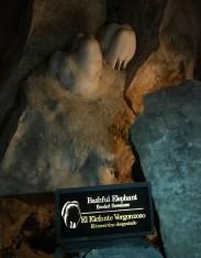 bashful-elephant-rock-formation-kings-palace-tour
