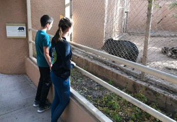 Carter and Natalie Bourn Watching a Javelina