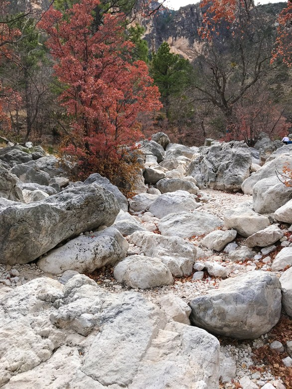 Rocky Trail through Fall Foliage and Boulders