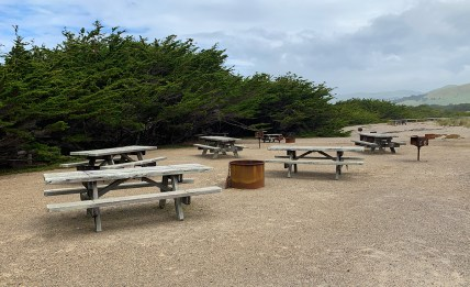Bodega Dunes Beach Picnic Area