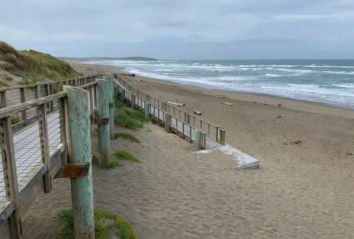 Bodega Dunes Wooden Boardwalk Beach Access