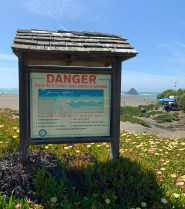 Deadliest Beach In California