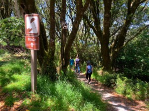 Hike From Overflow Parking to Heart's Desire Beach
