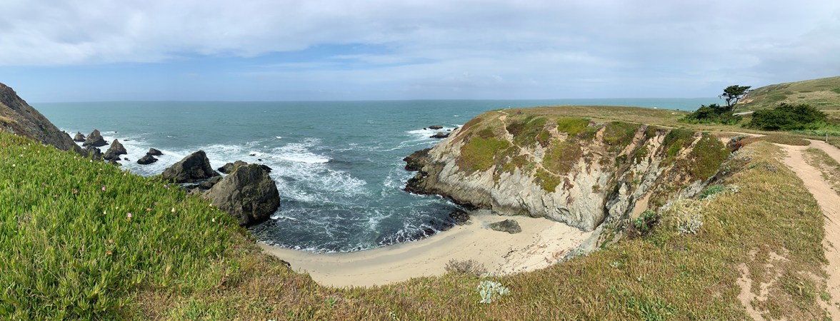 Hiking The Bodega Head Loop Trail