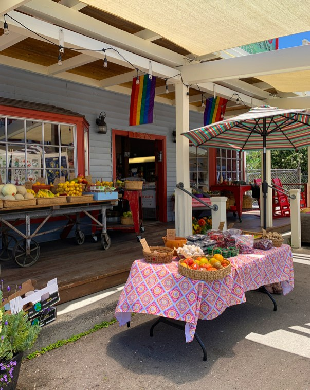 Point Reyes Station Shops