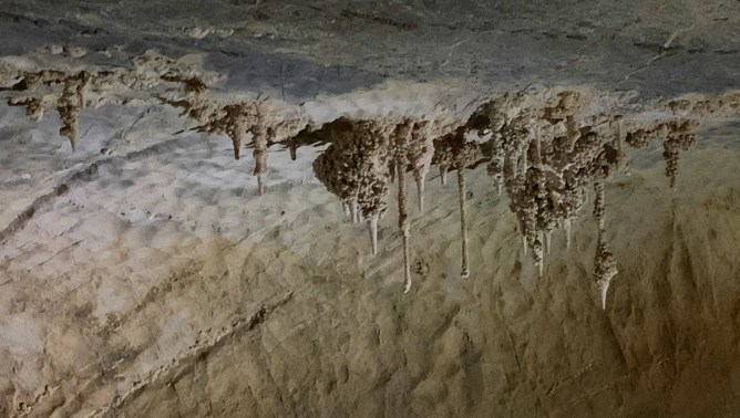 Stalactites at Boyden Cavern