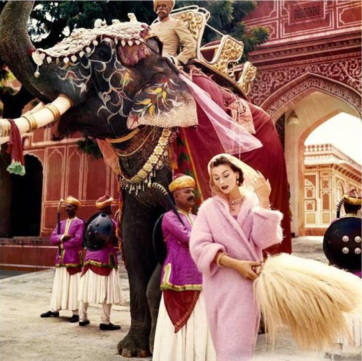 Vogue 100 Anne Gunnin in Jaipur
