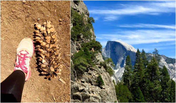 Pinecone Dome Yosemite Hike Tour San Francisco California Ocean, Road Trip USA America Travel