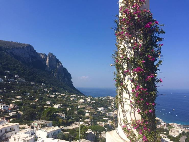 Italy Amalfi Coast Sea Mediterranean Flowers Cliff View City Holiday Travel