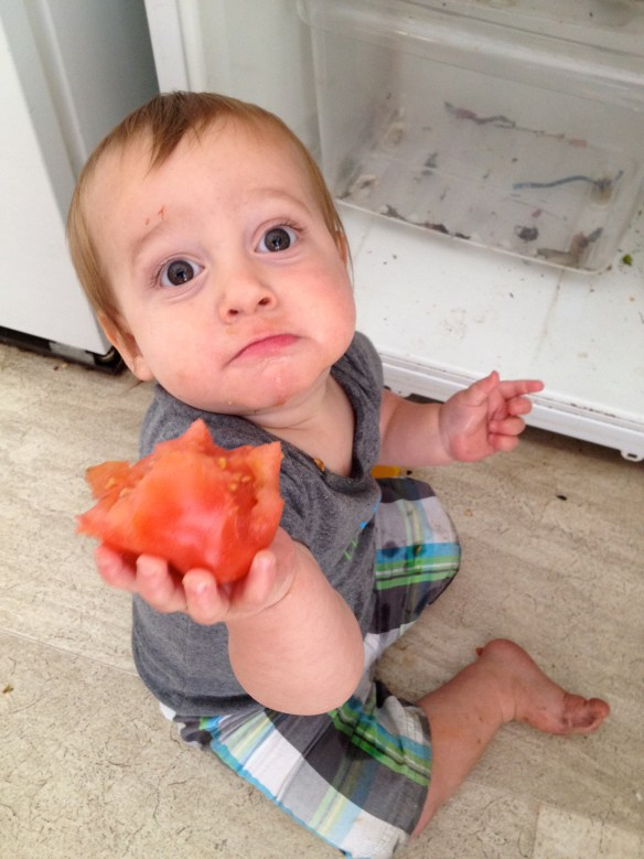 Are you saying I need to give up my tomato for the paleo diet?!