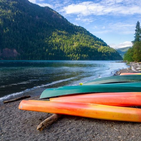 Canoes beside a river