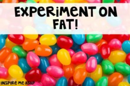 fat experiment