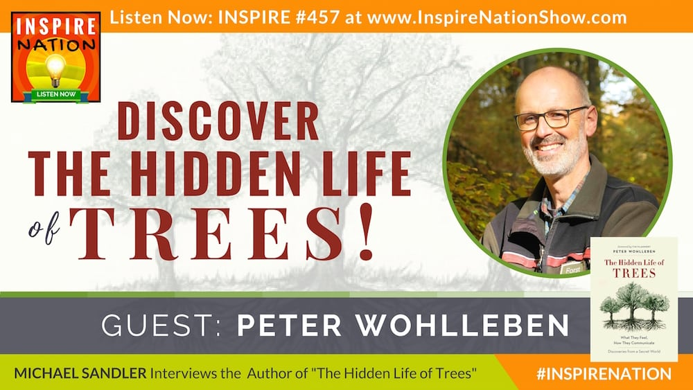 Listen to Michael Sandler chat with Peter Wohlleben about the hidden life of trees!