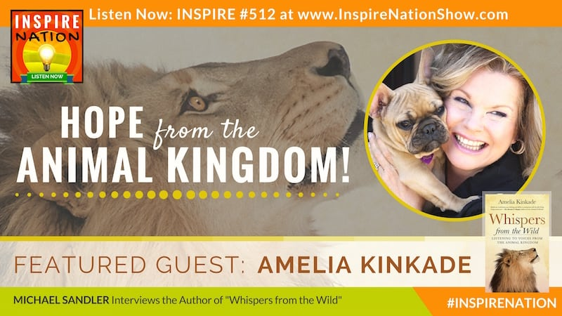 Listen to Michael Sandler's interview with Amelia Kinkade on the messages animals have to share with us during these times.