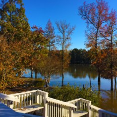 serene place to sit and view the lake