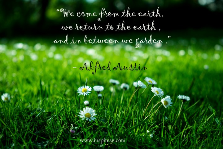 Quotes on gardening