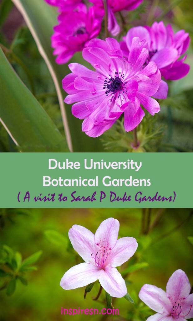 Duke University Botanical Garden