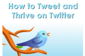 how to tweet and thirve on Twitter ebook